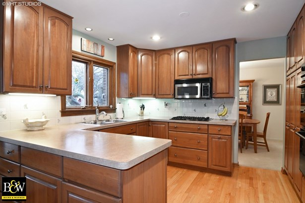Traditional, Detached Single - Arlington Heights, IL (photo 4)