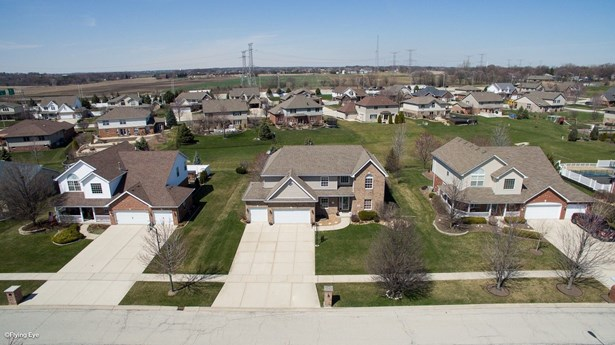 Detached Single - New Lenox, IL (photo 3)