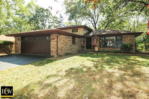 Tri-Level, Detached Single - Homewood, IL (photo 1)