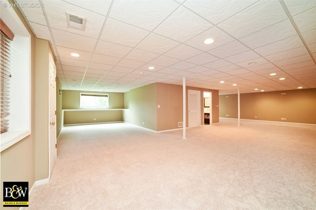 Ranch, Detached Single - Pingree Grove, IL (photo 4)