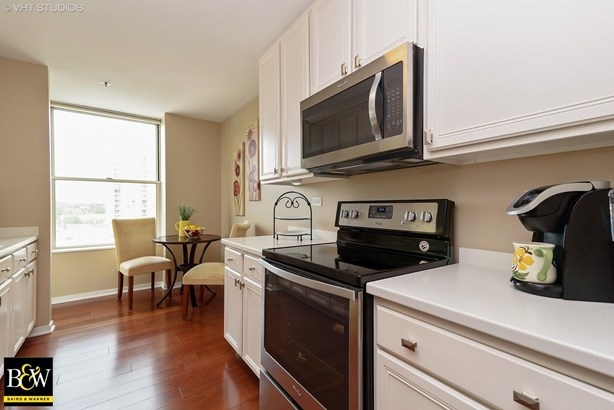 Condo - Arlington Heights, IL (photo 4)
