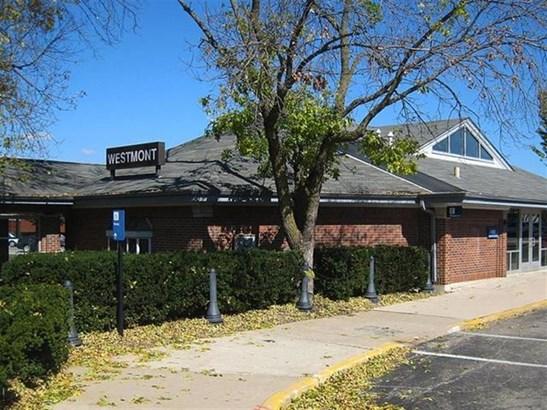Detached Single - Westmont, IL (photo 4)