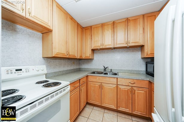 Condo - Prospect Heights, IL (photo 3)
