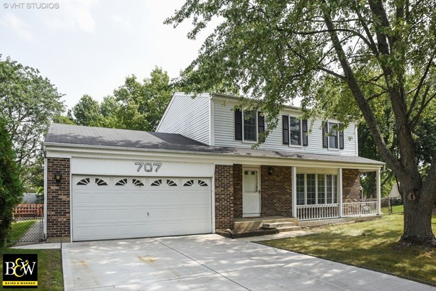 Traditional, Detached Single - Carol Stream, IL (photo 1)