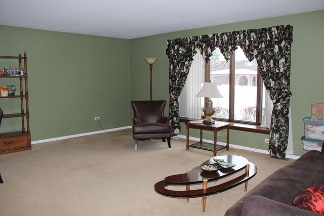 Ranch, Detached Single - Willowbrook, IL (photo 4)