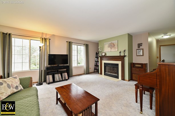 Condo - Elgin, IL (photo 3)