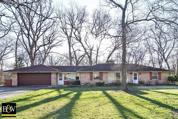 Ranch, Detached Single - Bartlett, IL (photo 1)