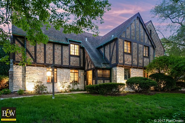 Tudor, Detached Single - La Grange, IL (photo 5)