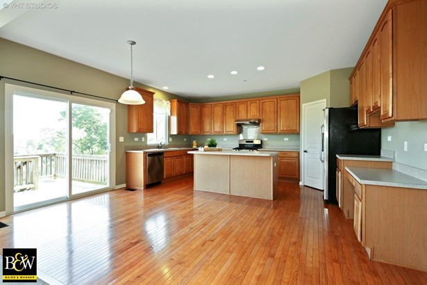 Contemporary, Detached Single - West Dundee, IL (photo 5)