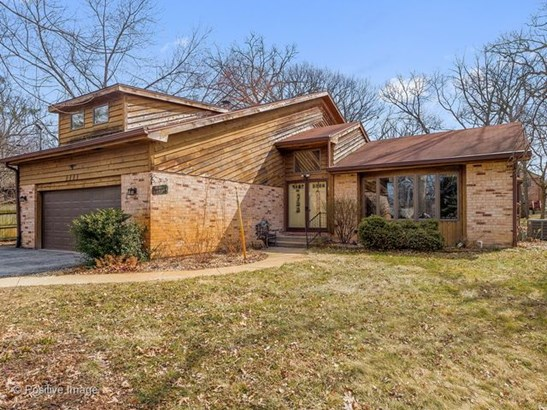 Detached Single - Willow Springs, IL