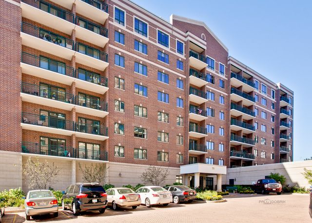 Condo - Des Plaines, IL (photo 1)