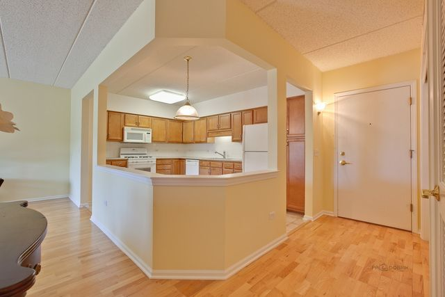 Condo - Des Plaines, IL (photo 5)