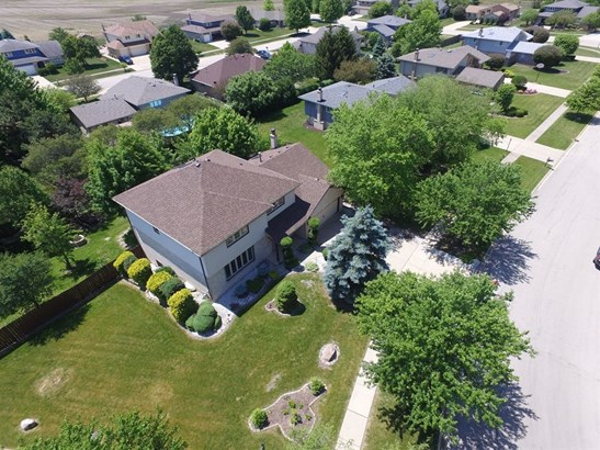 Contemporary, Detached Single - Homer Glen, IL (photo 2)
