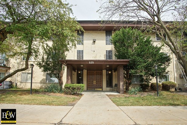 Condo - Arlington Heights, IL (photo 1)
