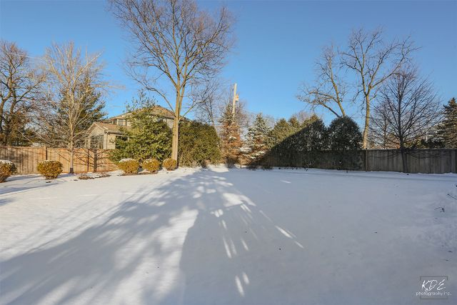 Detached Single - Downers Grove, IL (photo 3)