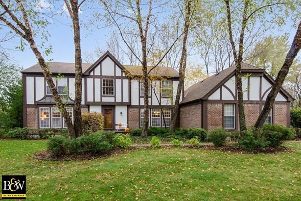 Tudor, Detached Single - Lakewood, IL (photo 1)