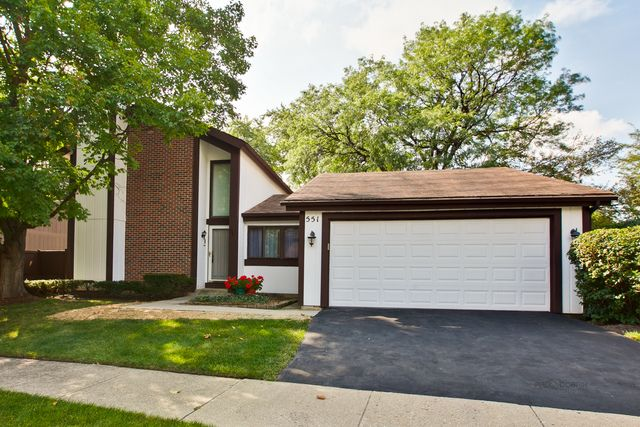 Contemporary, Detached Single - Roselle, IL (photo 2)