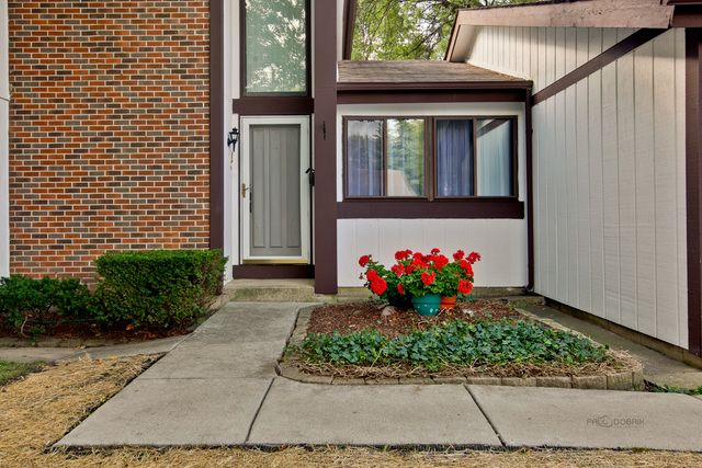 Contemporary, Detached Single - Roselle, IL (photo 3)