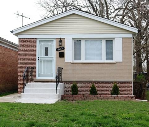 Detached Single - Chicago, IL