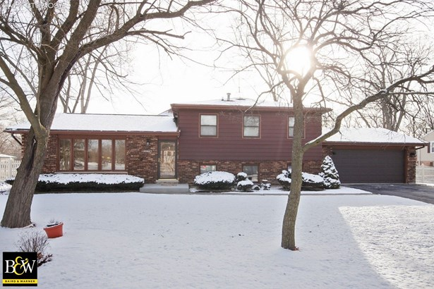 Tri-Level, Detached Single - Homewood, IL (photo 1)