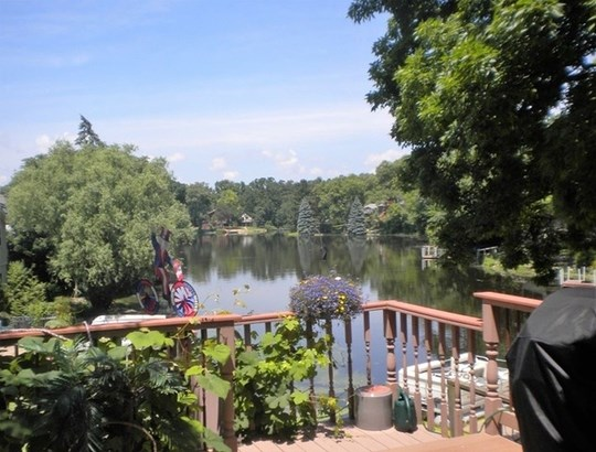 Detached Single - Island Lake, IL (photo 3)