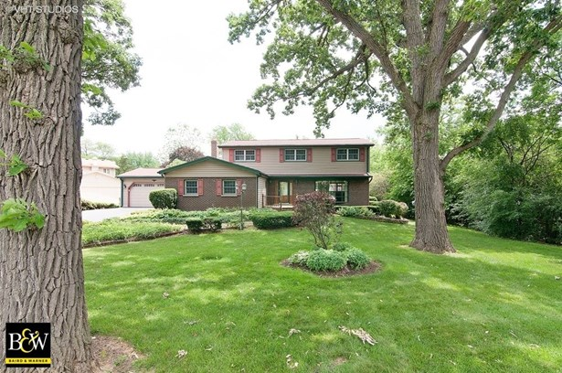 Traditional, Detached Single - West Chicago, IL (photo 1)