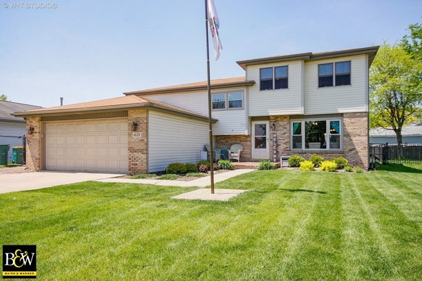 Quad Level, Detached Single - Lockport, IL (photo 1)