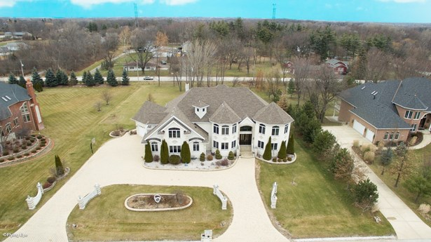 Traditional, Detached Single - Homer Glen, IL (photo 3)