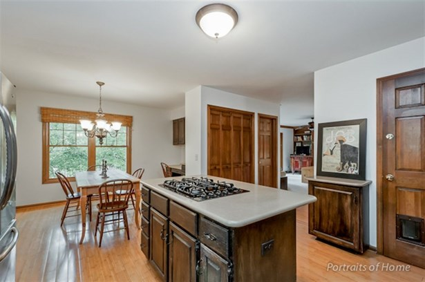 Traditional, Detached Single - Glen Ellyn, IL (photo 5)