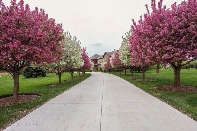 Colonial, Detached Single - Barrington Hills, IL (photo 3)