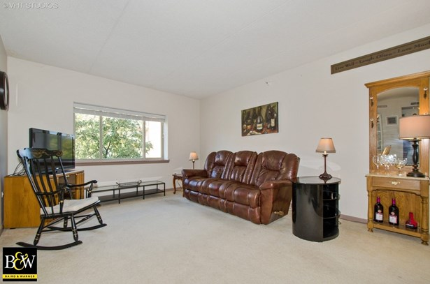 Condo - Des Plaines, IL (photo 2)