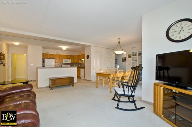 Condo - Des Plaines, IL (photo 3)