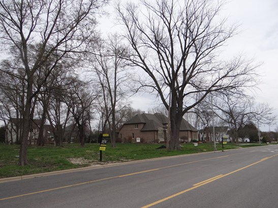 Detached Single - Naperville, IL (photo 4)