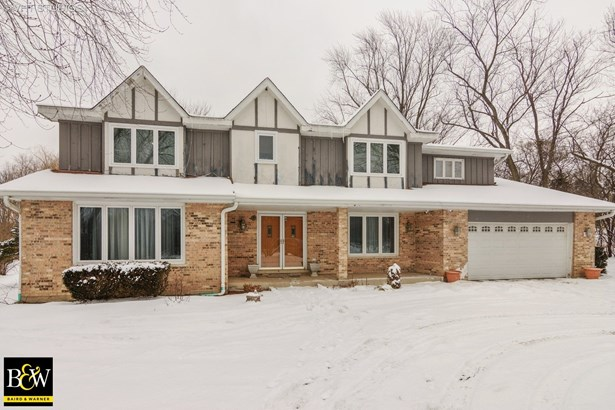 Traditional, Detached Single - Deer Park, IL (photo 1)