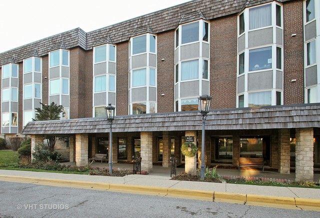 Condo - Park Ridge, IL (photo 1)