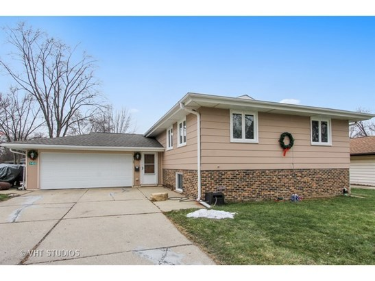Bi-Level, Detached Single - Schaumburg, IL (photo 1)