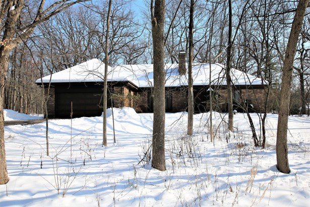 Ranch, Detached Single - East Dundee, IL (photo 3)