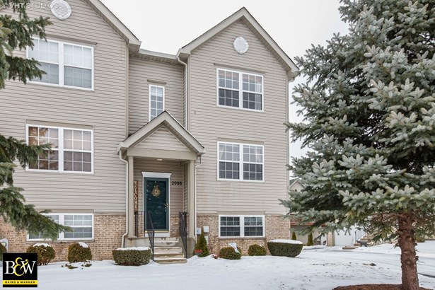 Townhouse - Lockport, IL (photo 1)