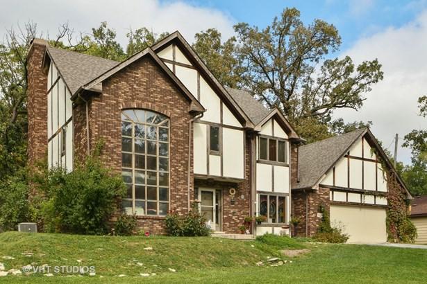 Tudor, Detached Single - Tinley Park, IL