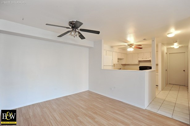 Condo - Prospect Heights, IL (photo 5)