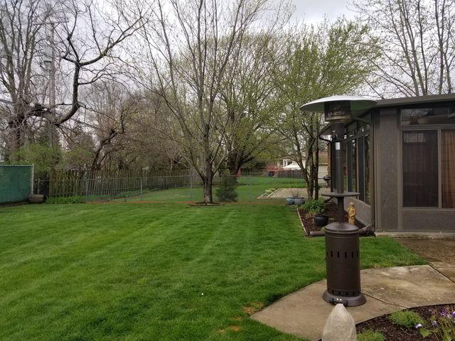 Detached Single - Lombard, IL (photo 3)