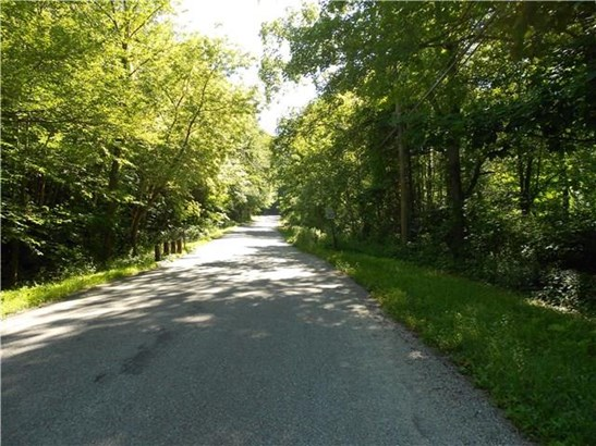12 Old Turnpike Road East, Bridgewater, CT - USA (photo 5)