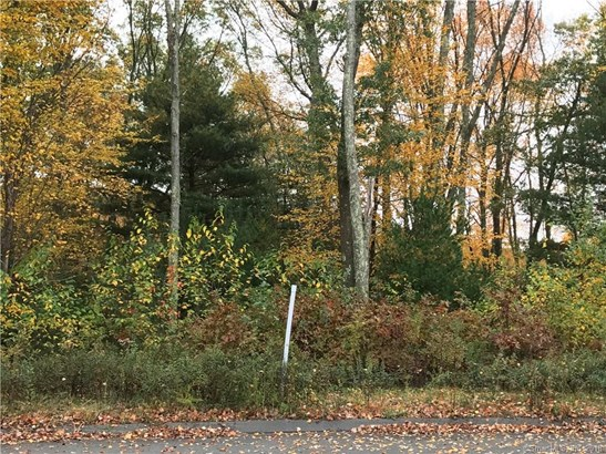 81 Lot 19 Jonathan Trail, Glastonbury, CT - USA (photo 5)