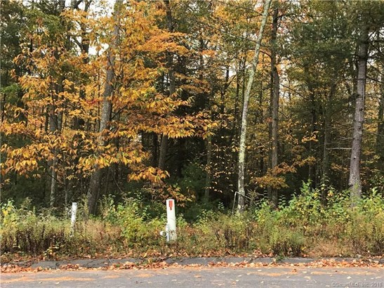 87 Lot 17 Jonathan Trail, Glastonbury, CT - USA (photo 2)