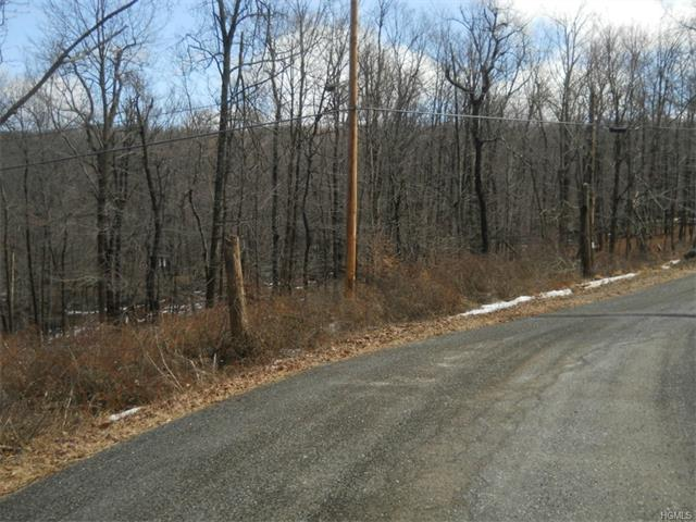 152 West Hook Road, Hopewell Junction, NY - USA (photo 1)