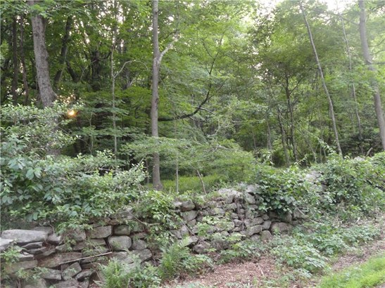 0 Tater Hill Road, East Haddam, CT - USA (photo 4)