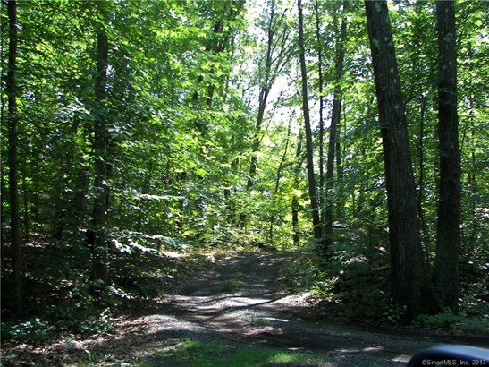 17 Old 40 Acre Mountain Road, Danbury, CT - USA (photo 5)