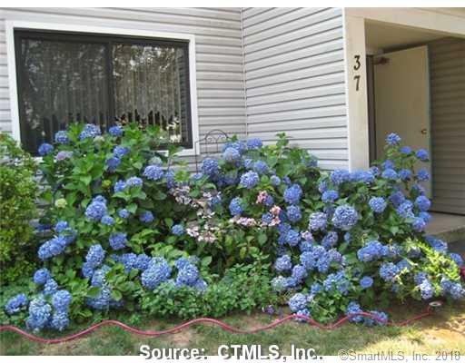 37 Brookwood Drive A, Rocky Hill, CT - USA (photo 1)