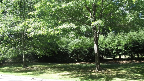 5c Woods End Road, Stamford, CT - USA (photo 1)