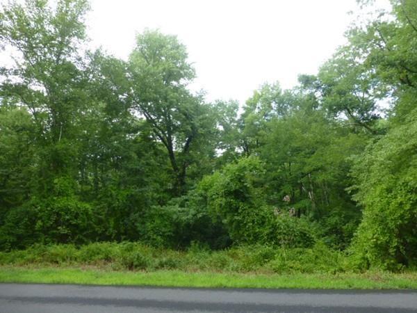 Lot 12 Wilbraham Road, Monson, MA - USA (photo 3)